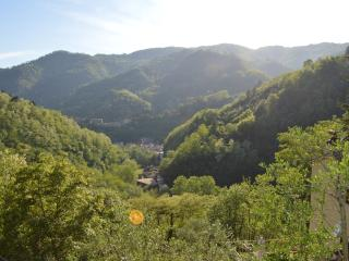 The view from the house towards the village of Pietrabuona