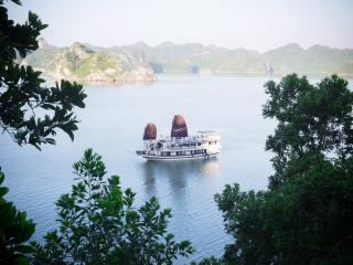 Swan Cruises Ha Long, Baie d'Halong