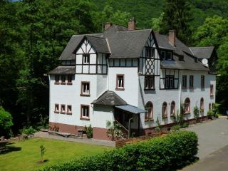 Wald Villa Ussbach Ap5