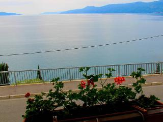 Big apartment by the sea , Rijeka, Kvarner