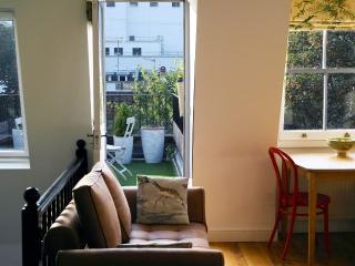 Stunning One Bed in Earls Court w private terrace