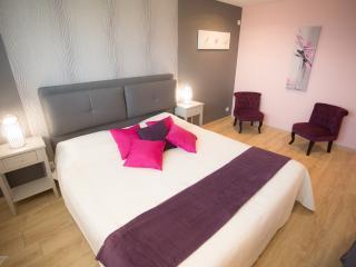 Chambre familiale 180/200 ou 2 lits jumeaux 90/200 + canapé lit 150/200