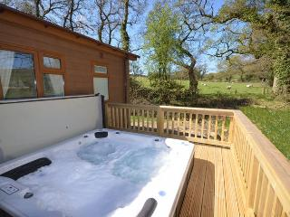 36128 Log Cabin in Dartmoor Na, Fowley Cross