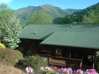 COZY, CLEAN, 3 B/B+ SUITES, MT.VIEWS, GARAGE, FLAT PARKING, DECKS, PET FEE, Maggie Valley
