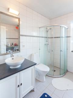 Bath room with a shower and a washing machine.