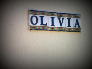 OLIVIA  - Notre villa sur Uzès