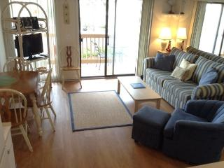 Great Condo for Snow Birds!  Come on down to beautiful HHI.
