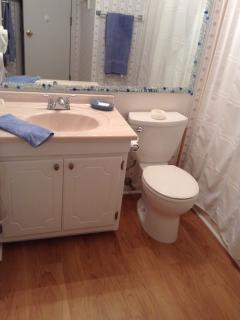 Bathroom with whimsical mirror and new flooring.