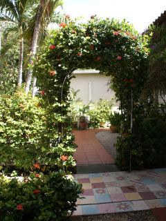 Tropical garden settting.