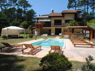 Holiday villa close to Hossegor for families and friends - Learn to surf!!!