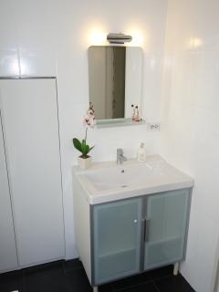 Sink area in main bathroom
