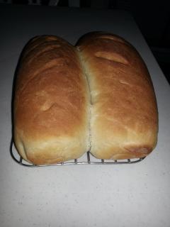 Swiss White Bread