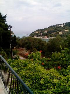 VIEW FROM BALCONI