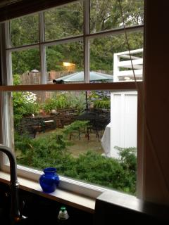 This is the view from the kitchen sink. Take a book out back and enjoy.