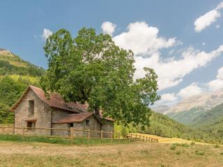 Dos casas en Borda Rehabilitada en Valle de Hecho