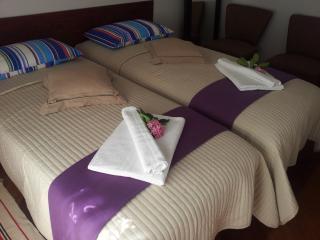 camera matrimoniale oppure due letti singoli