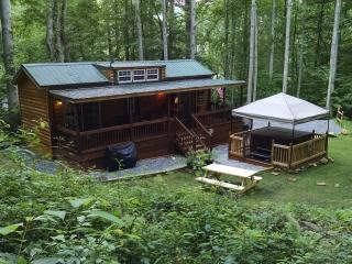Family Cabin, Waynesville