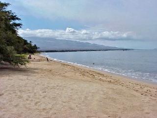 Wow! Beautiful Maui Oceanfront 2bd/2bath free WIFI