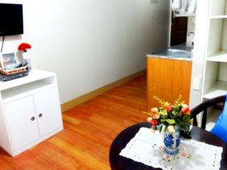 Fully Furnished Condo Rentals at Pasig City area