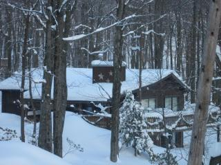 Winter is here! The snow if falling, book now!, Lake Harmony