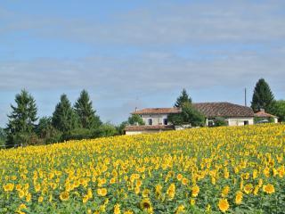 Chez Sarrazin - Gite La Fleurette, Brossac