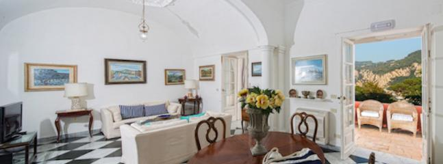 Il grande salotto con i suoi divani comodi , l'area pranzo spaziosa , saranno il vostro porto sicuro