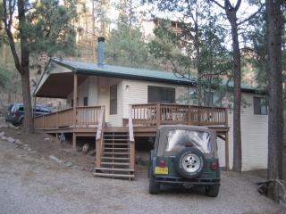 Cowhide Creek Cabin with Wifi