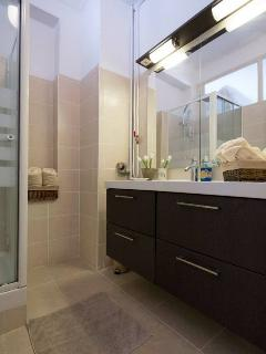 Modern bathroom with large basin and shower.