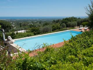 Villa Schena: Large Luxury Villa w/ Infinity Pool, Monopoli