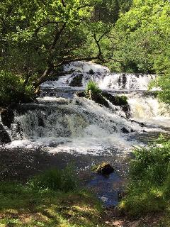 Lovely walk round th Avich Falls, Dalavich