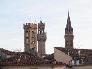 ORIUOLO - TERRACE WITH VIEW!!! (23), Florence