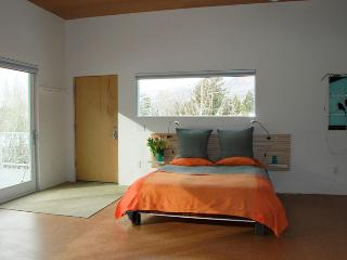 Gorgeous,  Modern STUDIO in town! - No car needed., Aspen