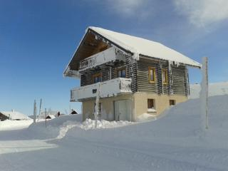 Veritable Chalet-gite