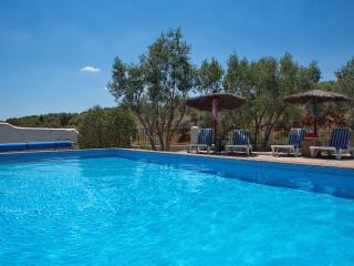 Almond Hill House: stylish farmhouse set in 2 acres, mountain views, gated pool