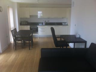 New, big and Cosy, Lexington Apartment- Slough, UK
