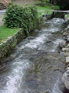 Enjoy the relaxing view and sounds of the creek