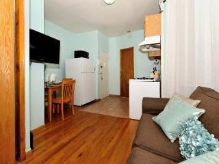 comfortable 1 bedroom apartment in Midtown (8438)