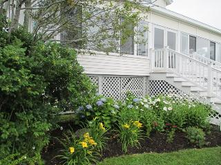 Flowers in the front of Cottage