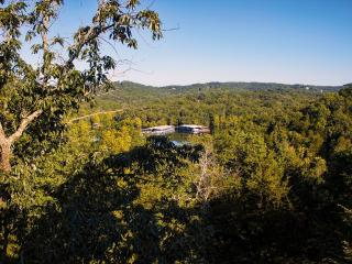 Branson Condo | Eagles Nest | Indian Point | Silver Dollar City | Lake Views (0410605)