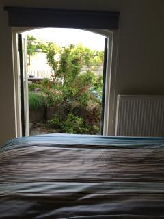View from bedroom into garden
