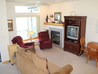 BRR120C Attractive Townhouse w/Garage, Wifi, Fireplace, Pet Friendly, Silverthorne