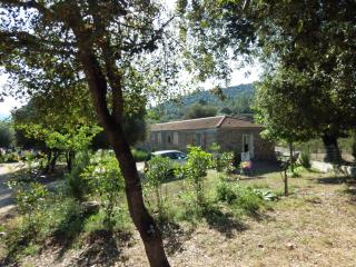 Villa T4 - Piscine, Moltifao