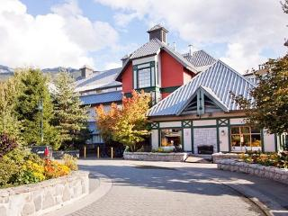 Whistler Village Centre: Studio Sleeps 2 Kitchen