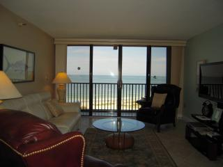 Living Room and Views!