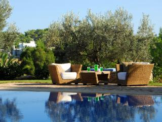 Porto Heli  Family Villa with large pool  & lovely garden near seaside accom, Kosta