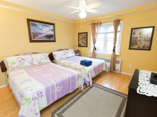 Cozy 1 bedroom 2 beds apt. near JFK, Nueva York