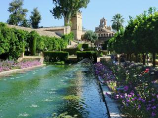 BNBESIDE THE ROMAN WALL (the library), Provincia de Córdoba