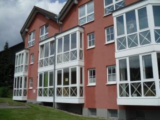 Schönes Ferienappartement im Harz in Braunlage