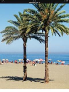 One of many Estepona beaches