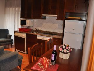 Apartamentos El Cazador - Apto nº 1, San Vicente de Toranzo